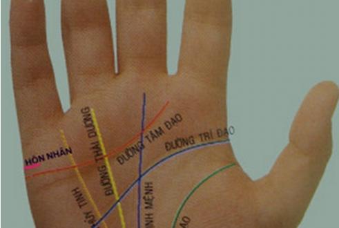 Cách xem chỉ tay để biết Vận Mệnh mỗi con người